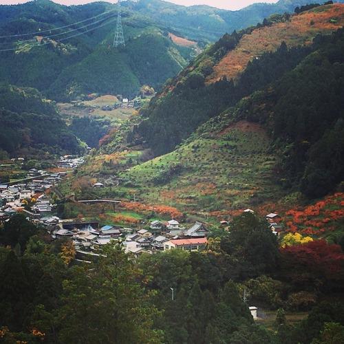 秋紅葉.JPG