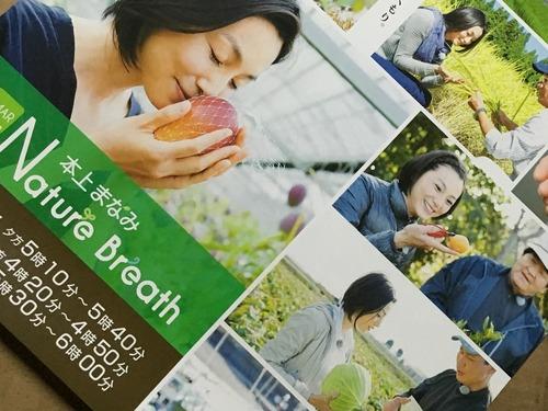 高級富有柿.jpg