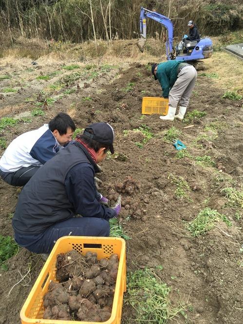 奈良農業.JPG