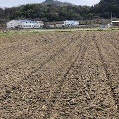 新しい畑を借りました!!