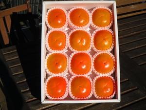 【富有柿】大玉2Lサイズ--送料無料--